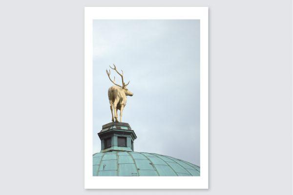 neckarliebe_produkte_heimat_postkarten_015